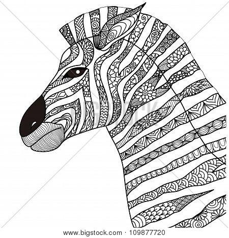 Zebra Coloring Book
