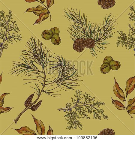 Forest vintage seamless background with owls, spruce branches an