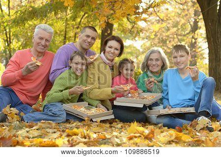 Family eating pizza in  park