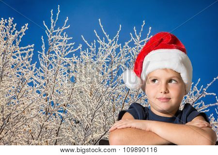 The charming seven-year-old boy in red Santa Claus's cap thoughtfully looks up. The boy is photographed against the snow-covered Christmas wood