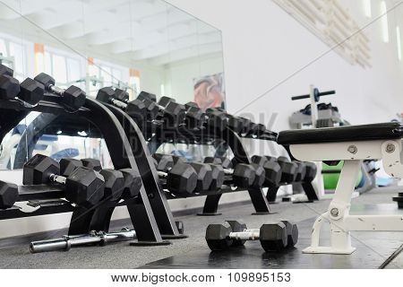 Dumbells in a rack at the gym