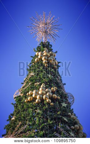 Top Of The Christmas Tree With A Filtered Sky In The Background In Moscow, Russia