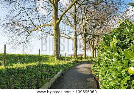 Narrow Footpath Along A Dike