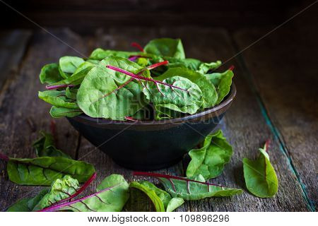 Fresh Chard Leaves On Rustic Background