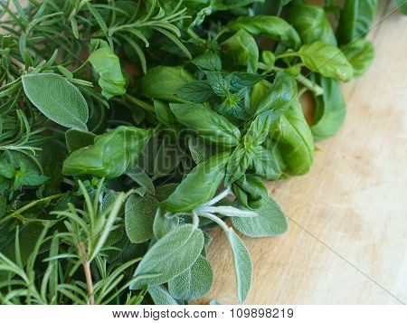 Assortment of aromatic herbs