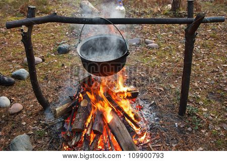 Cooking in forest