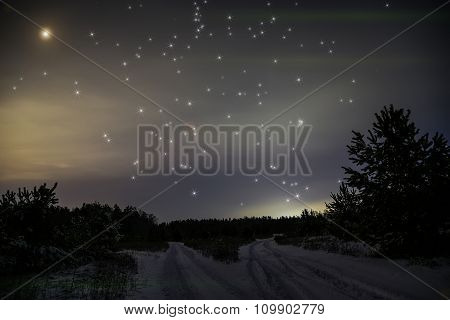 Forest Roads Night Snow Stars