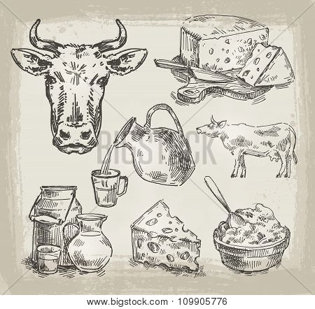hand drawn sketch set of dairy products and cow. vector illustration