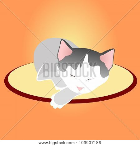 Sleeping cat in silence in sweet home