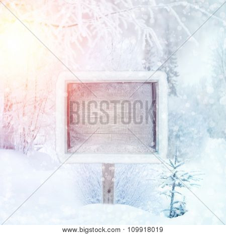 Winter background, scene, landscape. Wooden sign in the winter forest. winter wonderland. Winter trees in snow. Space for text. Christmas and happy new year design. Border Holidays, Snowflakes.
