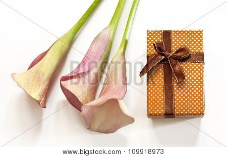 Photo Of Pink Callas And Jewellery Gift Box