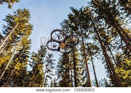 Drone And Trees