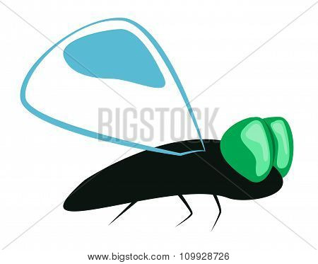 Abstract Flying Insect