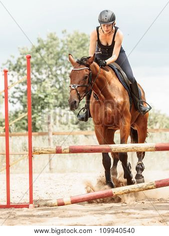 Woman Jockey Training Riding Horse. Sport Activity