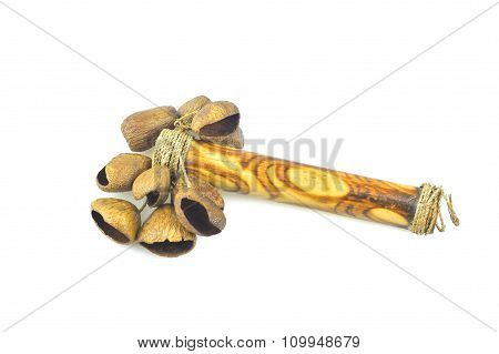 Calabash Rattle Isolated On White Background.