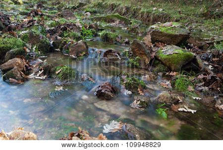 Creek with stones and leaves in autumn