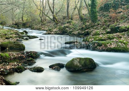Beautiful autumn landscape with a river surrounded by trees