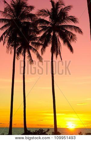 Sunset Divine Bay View