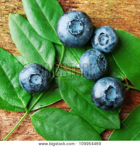 Fresh blueberries with green leaves on wooden table, closeup