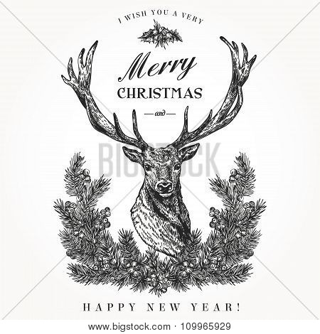 Christmas Card With A Deer.