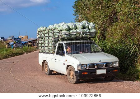 Pickup Transfer Vegetables