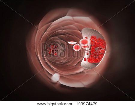Endoscopic view of flowing red blood cells in a vein