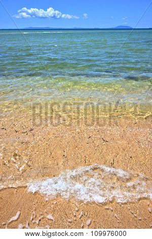 Paradise Beach Seaweed  Indian Ocean Nosy Be    Foam