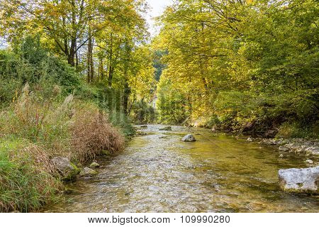 Creek in the mountains of Upper Austria