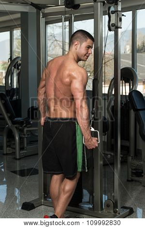 Triceps Workout With Cables