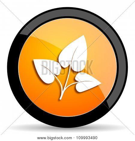 leaf orange icon