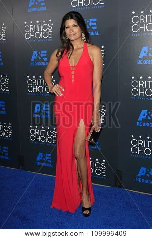LOS ANGELES - MAY 31:  Andrea Navedo at the 5th Annual Critics' Choice Television Awards at the Beverly Hilton Hotel on May 31, 2014 in Beverly Hills, CA