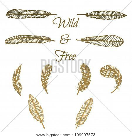 Hipster Feather Elements, Vintage Doodle Feather
