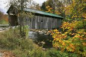 picture of covered bridge  - color of the changing leaves near a vermont covered bridge - JPG
