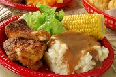 picture of biscuits gravy  - A picnic lunch with chicken and salad and mashed potatoes
