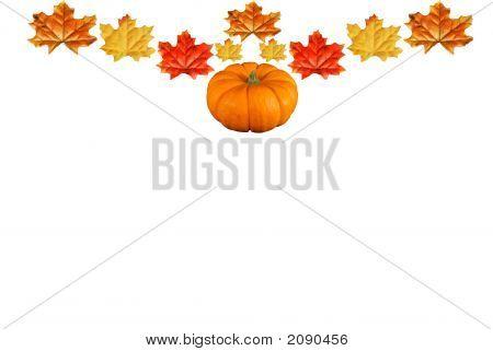 Pumpkin Leave Border