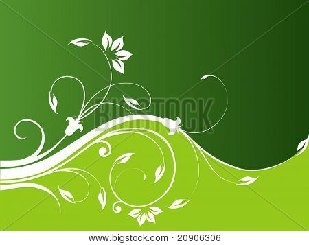 abstract vector illustration background floral background