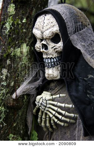 Hooded Skeleton