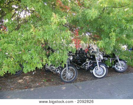 Hidden Motorcycles