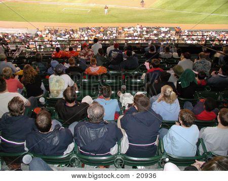 Baseball  Fans