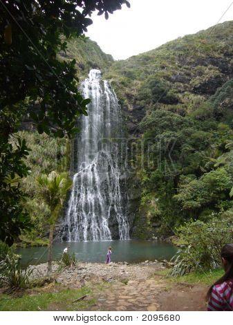 Waterfall Near Piha Beach