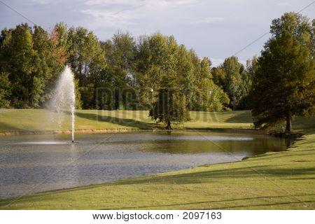 Park Background Image