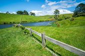 Green Grass Field In The Countryside Landscape poster