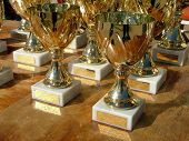 picture of avow  - sport cups waiting to be handed out - JPG
