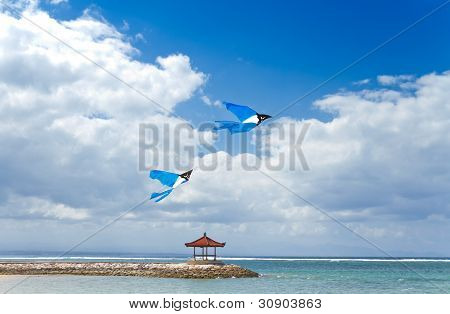 playing kites on the beach