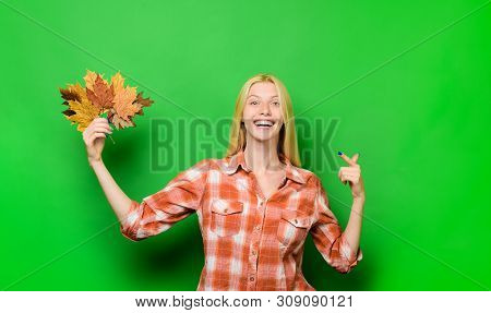 poster of Autumn Girl. Smiling Woman Playing With Leaves. Happy Girl Having Fun With Leaf Fall. Autumnal Mood.