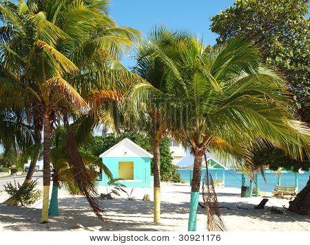 Tropical Beach Grand Cayman
