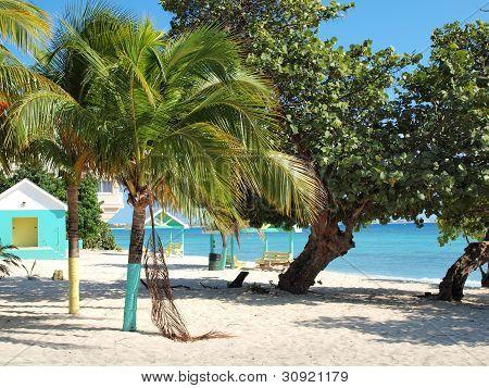 Beach Grand Cayman Cayman Islands