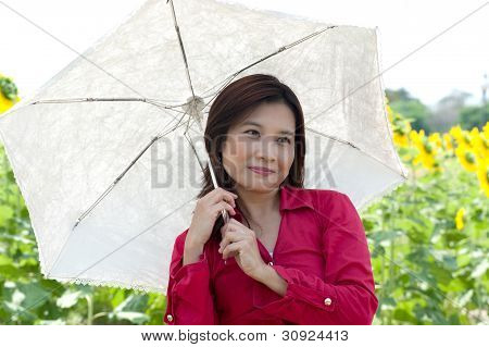 Portrait Of Pretty Asian Woman Hold White Umbrella Posing In Sunflower Field .