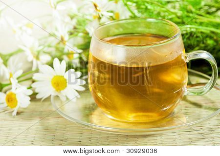 Flowers Camomile (ox-eye Daisy) And Tea