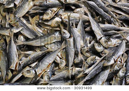 Small Dried Fish